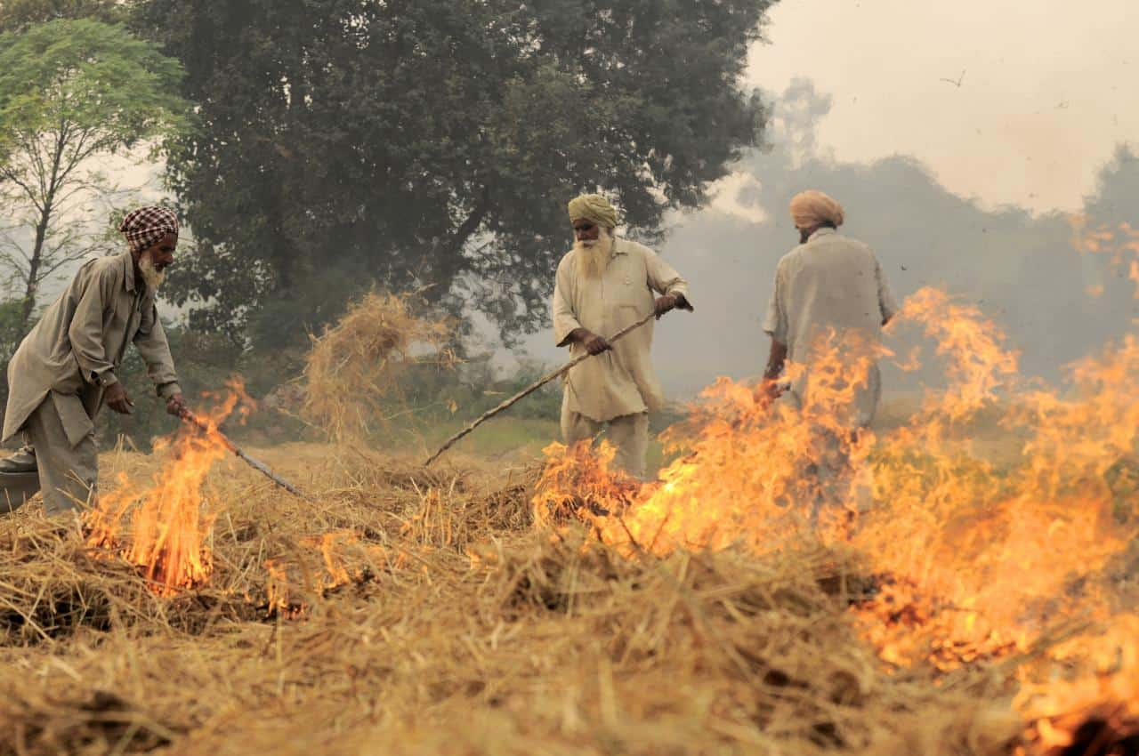 Pic by Neil Palmer (CIAT). Burning of rice residues in SE Punjab, India, prior to the wheat season.